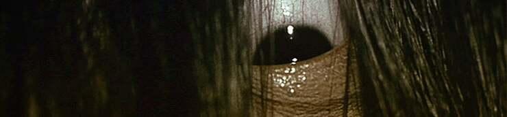 Les 666 perles du chapelet de l'horreur ...