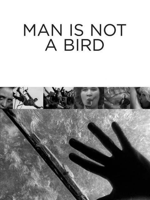 L'Homme n'est pas un oiseau