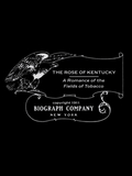 La Rose du Kentucky