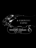A Country cupid