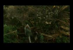 bande annonce de Aliens vs. Predator - Requiem