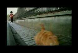 bande annonce de Garfield 2