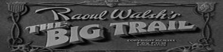 1930, les meilleurs westerns