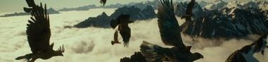 Les Deus Ex Machina au cinéma.