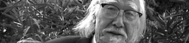 Seijun Suzuki : Préférences et micro-critiques